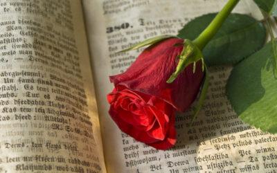 Palabras de vida en la Biblia