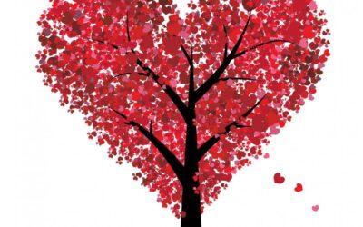 Palabras de vida y amor
